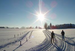 Strabag Ve stopě Zlaté lyže